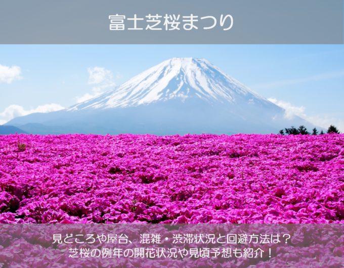 富士芝桜まつり2019の見頃や見どころは?混雑や渋滞の状況と回避方法も紹介!