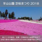 羊山公園芝桜まつり2018の屋台や混雑状況は?芝桜の見頃や開花状況も紹介!