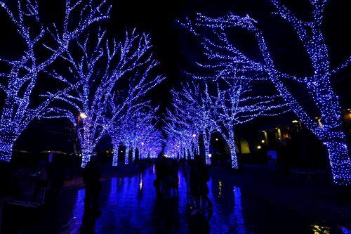 渋谷青の洞窟2018イルミネーション点灯場所の地図やアクセスは?時間や期間もご紹介!
